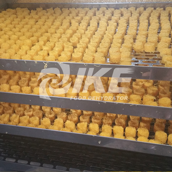 IKE-Looking For Lemon Drying Machine, Commercial Fruit Dehydrator