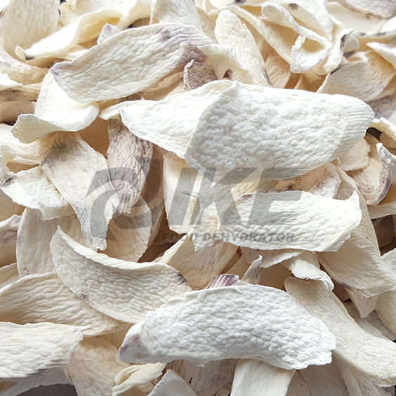 IKE-News About Chinese Yam Drying Machine, Astragalus Chinese Herb-1