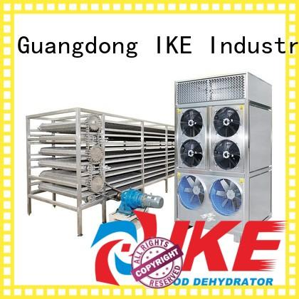 large food IKE Brand commercial food dryer machine factory