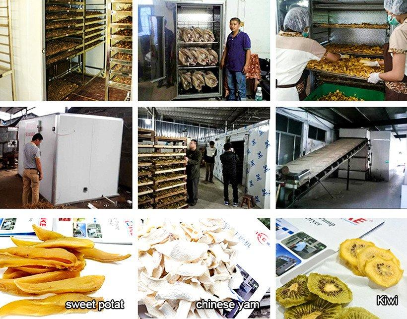 temperature steel middle professional food dehydrator IKE manufacture