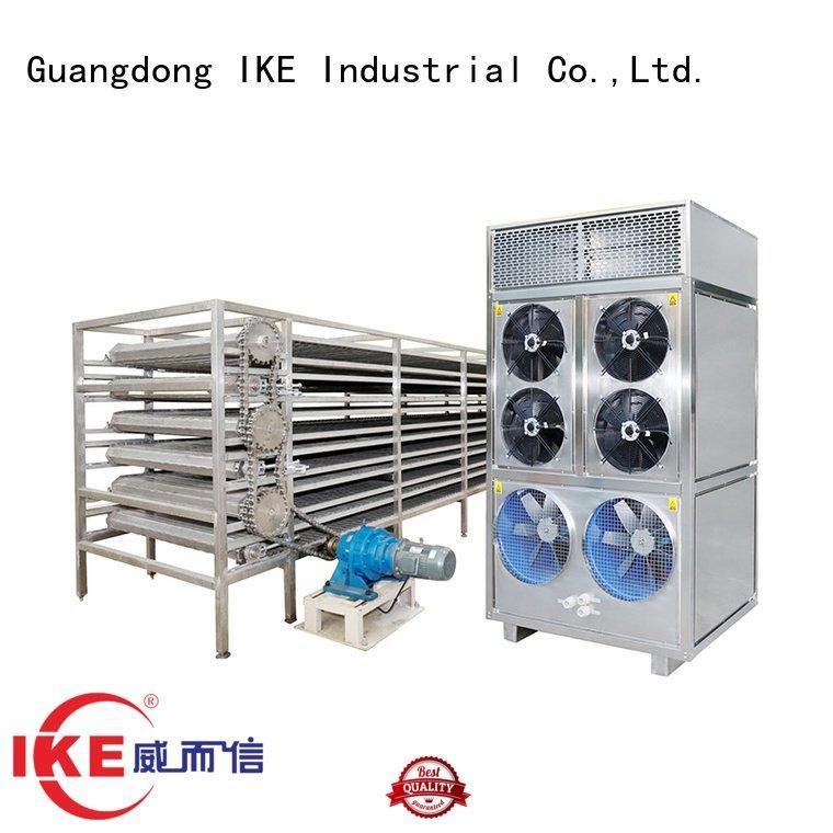 IKE conveyor drying line food dehydrator
