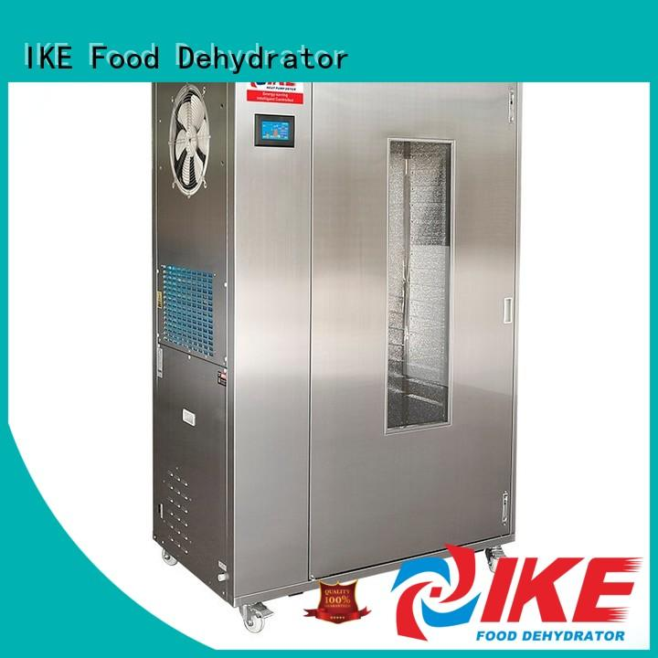 IKE oven drying oven stainless pump