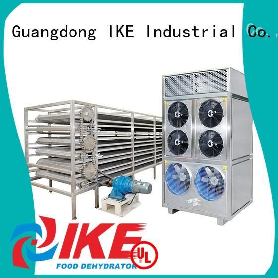 conveyor drying line customized for fruit IKE