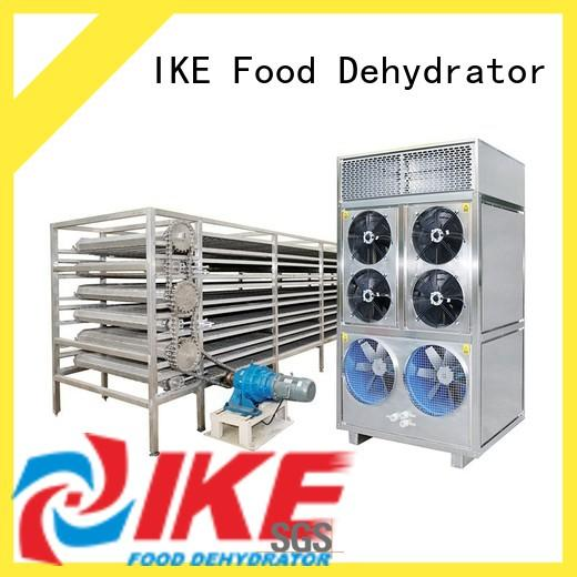 IKE drying line hot-sale for food