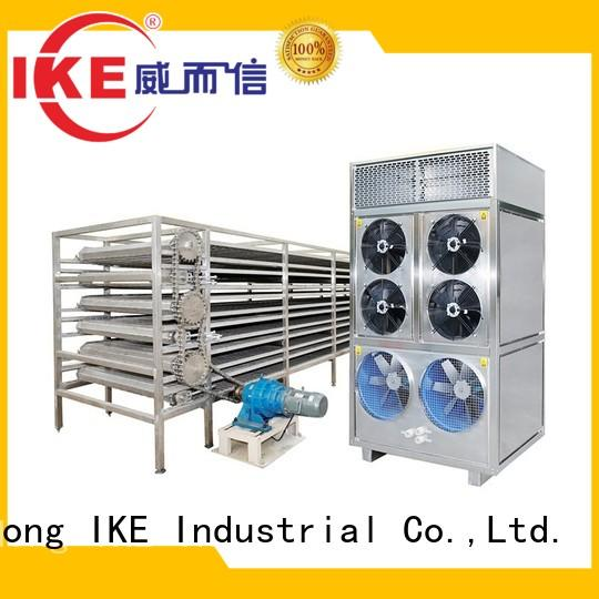 commercial food dryer machine dehydrator customized IKE Brand drying line