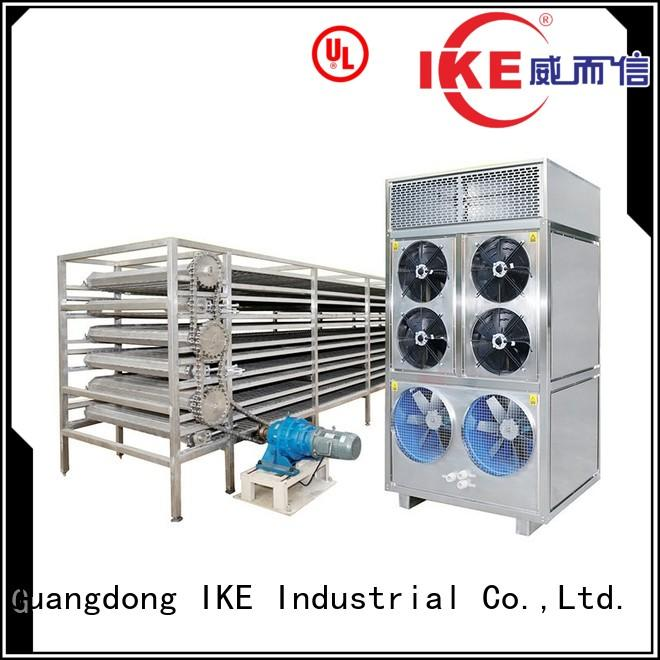 Wholesale mesh commercial food dryer machine IKE Brand