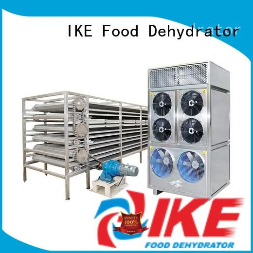 IKE cheap steel conveyor belt commercial for fruit