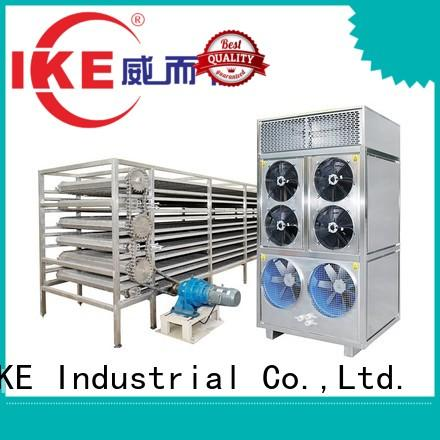 large dehydrator customized belt drying line IKE