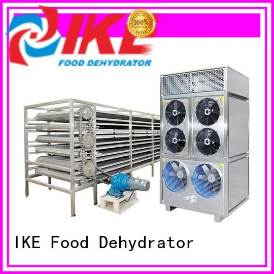 IKE stainless steel conveyor hot-sale for fruit