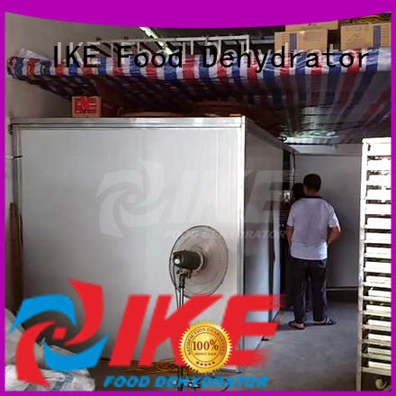 fruit dehydrator machine steel IKE company