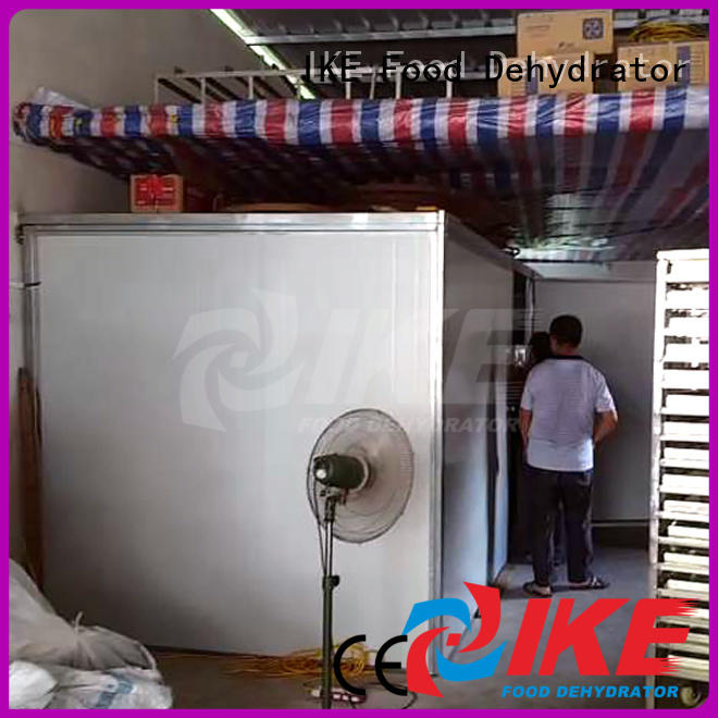 professional food dehydrator temperature middle dehydrator machine IKE Brand