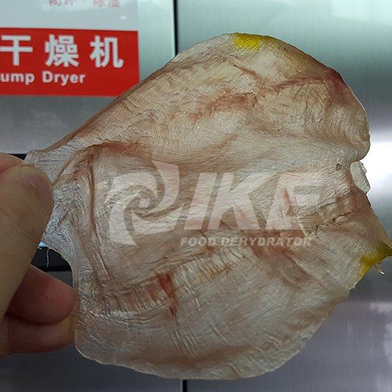 IKE-Fish Maw Drying Machine, Fish Maw dehydrator, Seafood Dehydrator-2