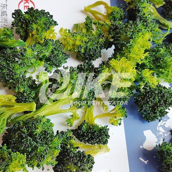 Máquina de secado de brócoli