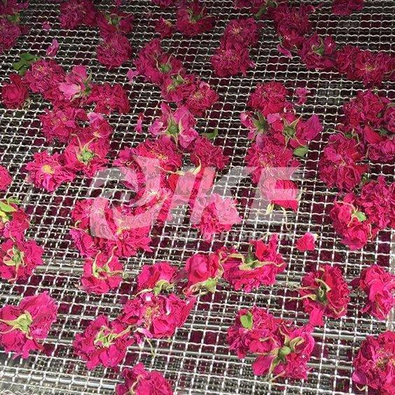 Secadora de flores