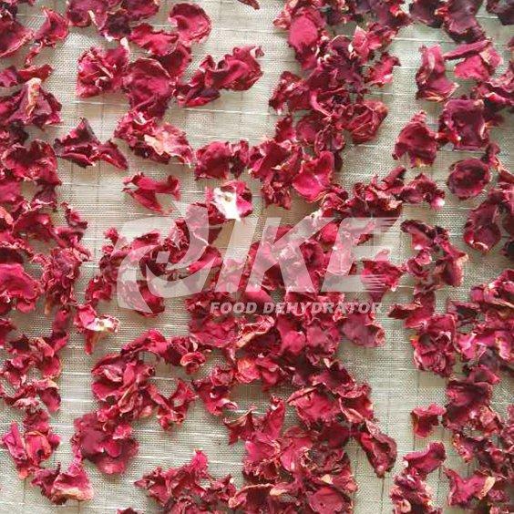 Máquina secadora Rose Flower