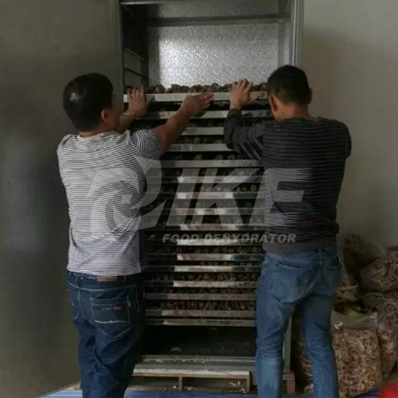 IKE-Looking For Lemon Drying Machine, Commercial Fruit Dehydrator