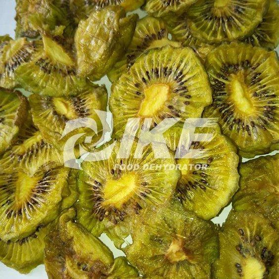 secadora de kiwi