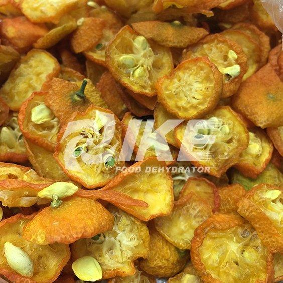 Deshidratador de kumquat