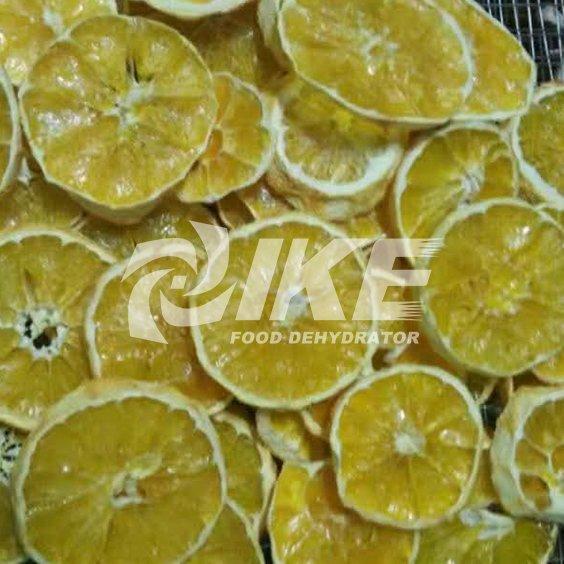 Máquina de secado de limón