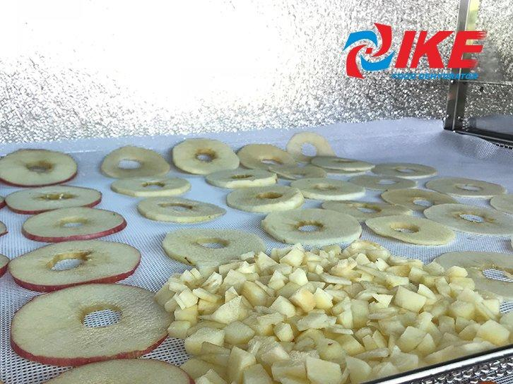 how to dry fruit apple by WRH-100B