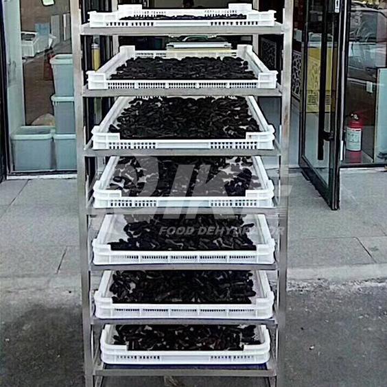 IKE-Vegetable Drying Equipment-choy Sum Drying Machine