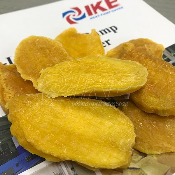 IKE-Looking for Mango Dehydrator News About Fruit Dehydrator From IKE-1