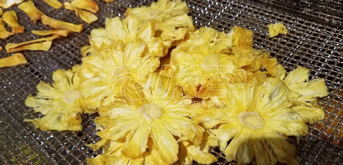 IKE-Pineapple Dehydrator   Fruit Dehydrator