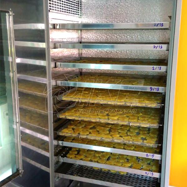 IKE-Pineapple Dehydrator | Fruit Dehydrator-1