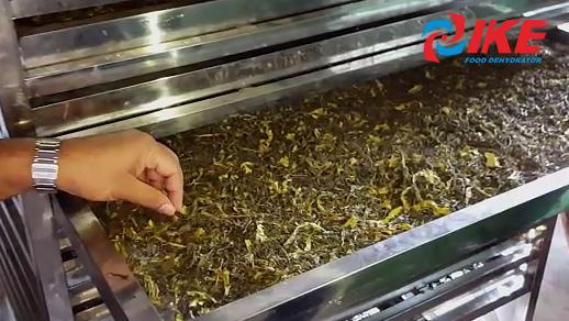Tea Dehydrate By IKE Tea Dehydrator