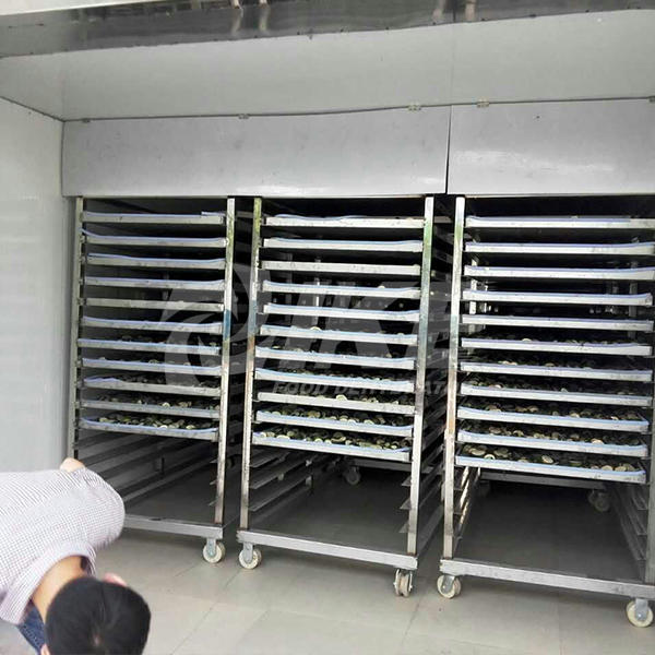 stainless dryer vegetable dehydrator machine grade IKE