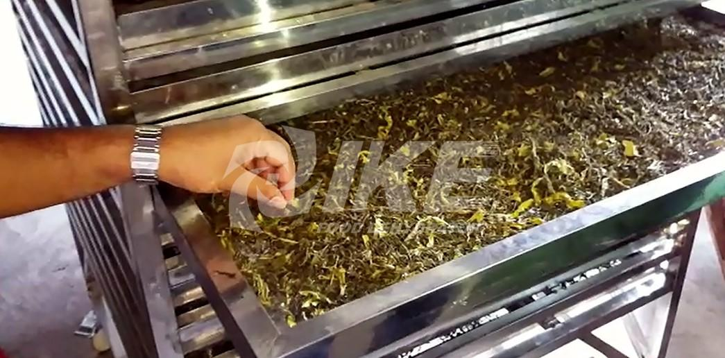 commercial food dehydrator drying for drying IKE