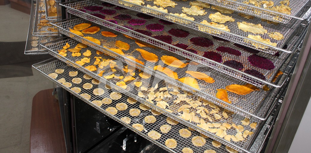 IKE-Dehydrator Trays Stainless Steel 304 Wire Mesh Food Dehydrator Tray For Dryer-2