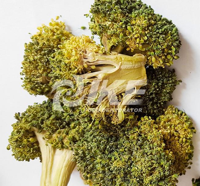 IKE-Read News About Broccoli Dehydrator From Ike Food Dehydrator Supplier-1