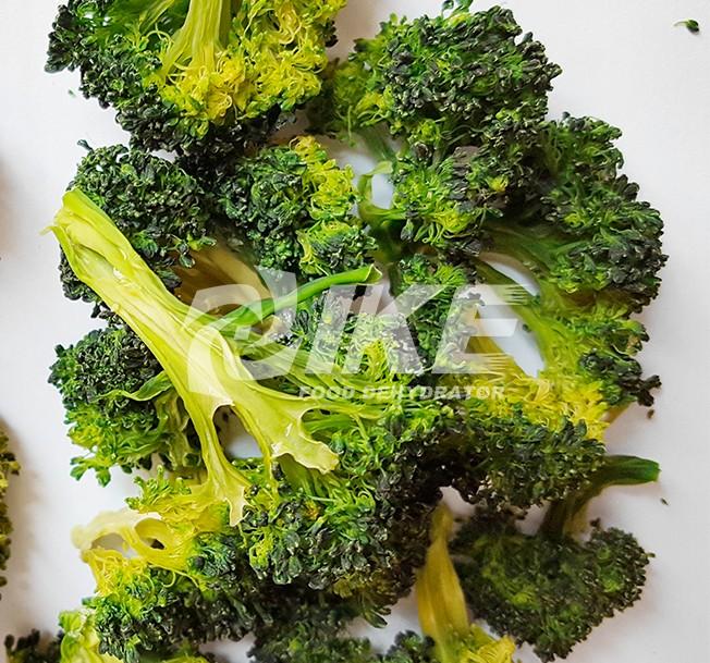 IKE-Read News About Broccoli Dehydrator From Ike Food Dehydrator Supplier-2