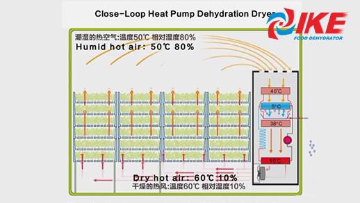 Introduction Of IKE Heat Pump Dehydrator