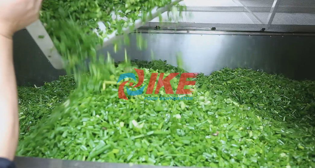 IKE-Large Dehydrator Manufacture | Aio-500g Commercial Grade Electric Dehydrator-4