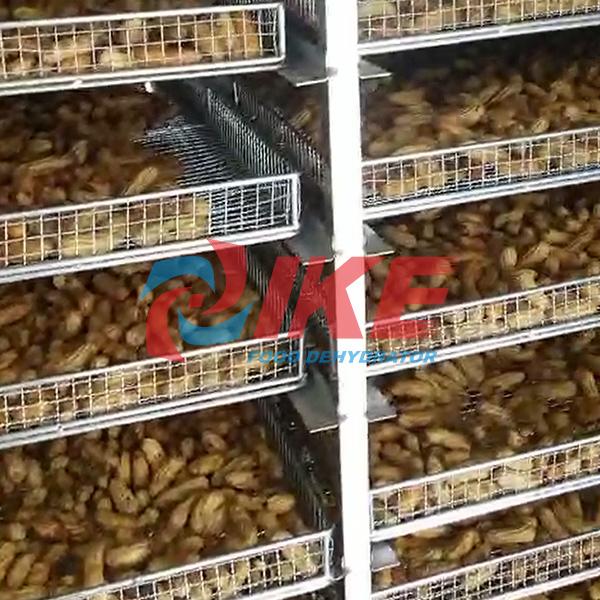 IKE-Peanut Drying Machine News About Grain Dryer Machine From IKE