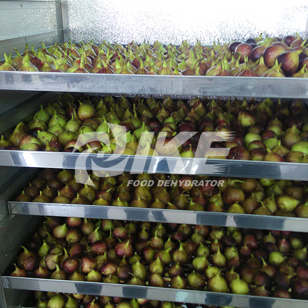 IKE-Fig Drying Machine, Fruit Drying Equipment, Hot Air Drying Oven-2