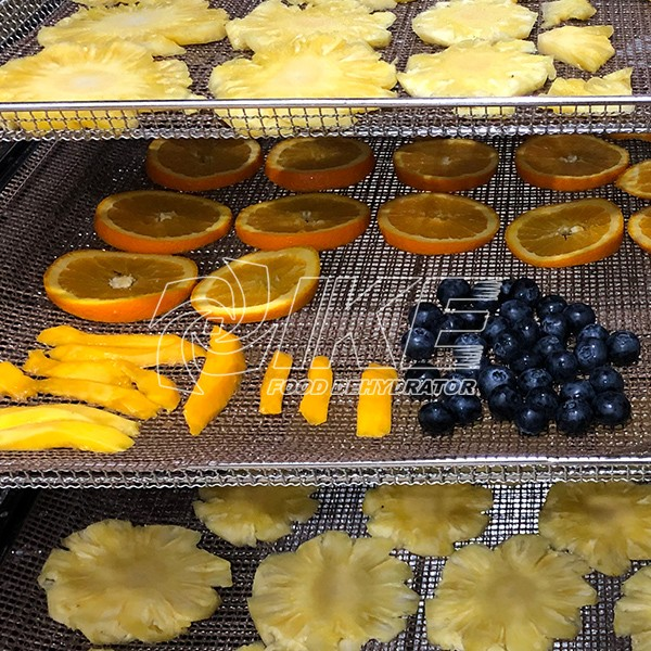 IKE-Orange Dehydrator, Guangdong Ike Industrial Co,ltd