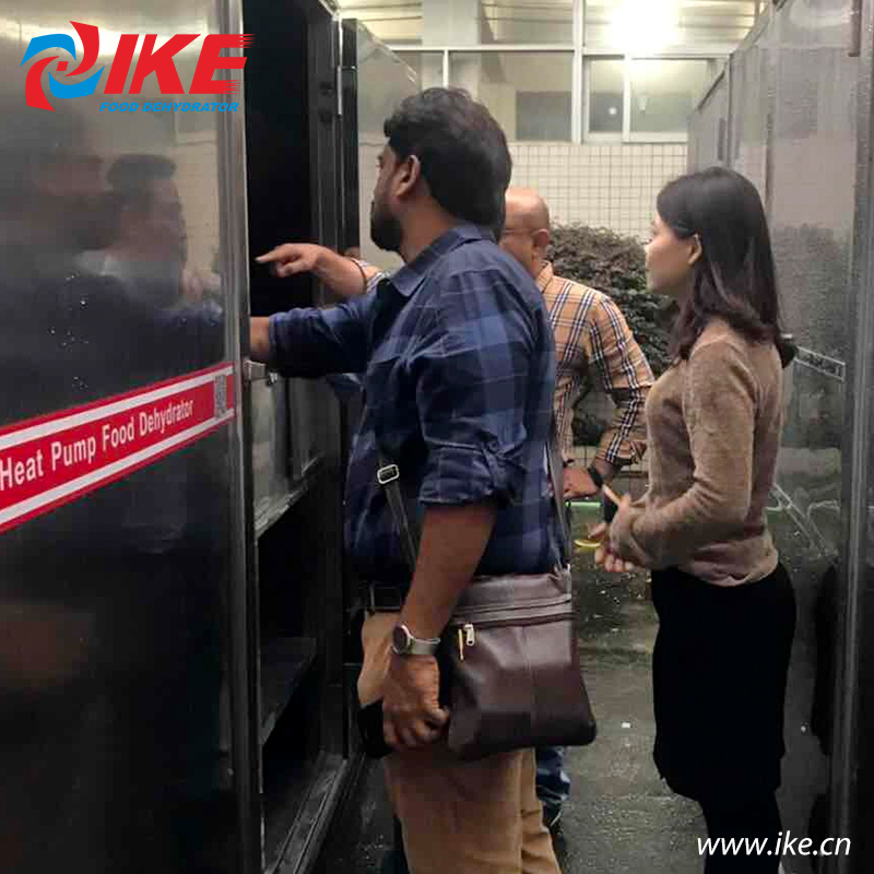 IKE-Indian Customers Come To Check Their Custom-made All-in-one Shallots Dryer