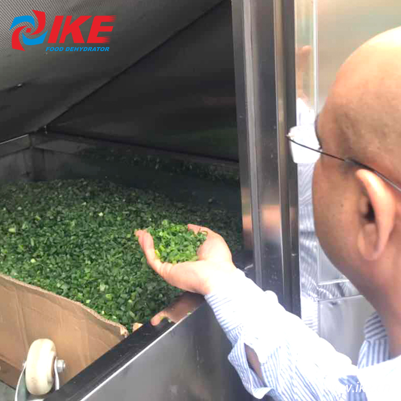 IKE-Indian Customers Come To Check Their Custom-made All-in-one Shallots Dryer-1