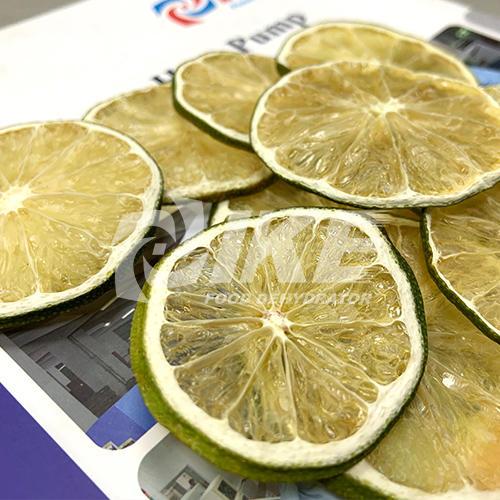 Lime Dehydrator