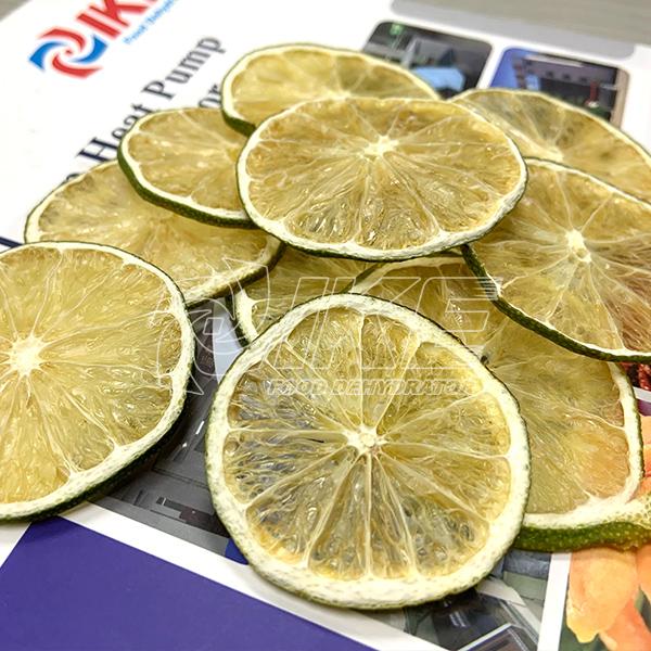 IKE-Lime Dehydrator, Guangdong Ike Industrial Co,ltd-1