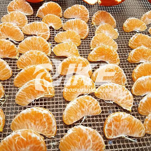 Tangerine Dehydrator