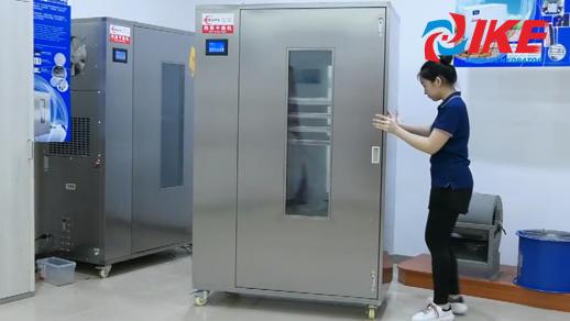 WRH-100 series medium-high temperature food dryer