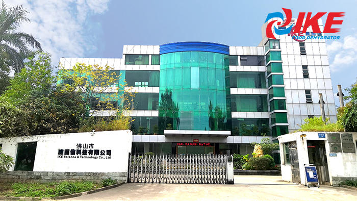 Guangdong IKE Industrial Co. Ltd Introduction