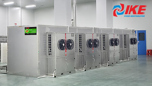 AIO-DF600 IKE fish drying system