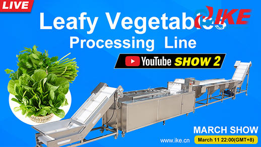 Livesteam-IKE MARCH SHOW 2 Leafy Vegetables Processing Line
