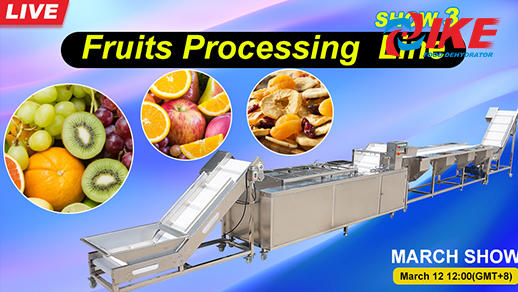 Livesteam-IKE MARCH SHOW 3 Fruit Processing Line