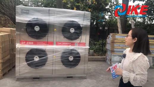 LiveSteam-Loading of IKE EMB-DF2400GW Food Dryer
